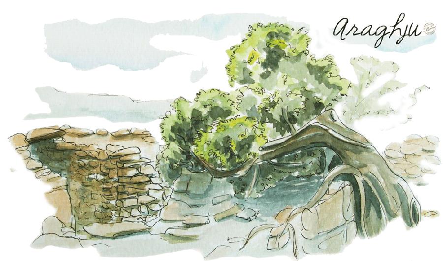 Aquarelle Corse