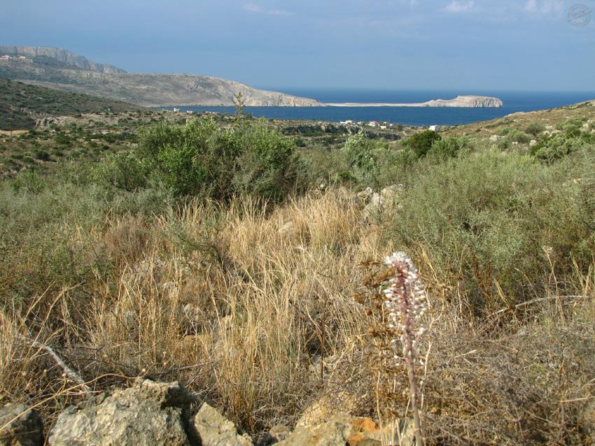 magne-grece3