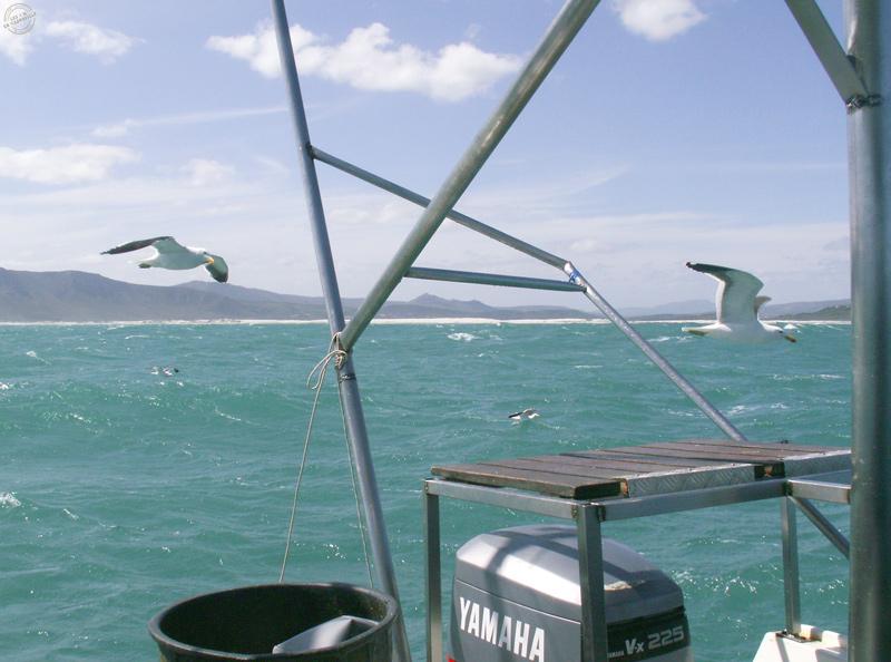 Sur le bateau