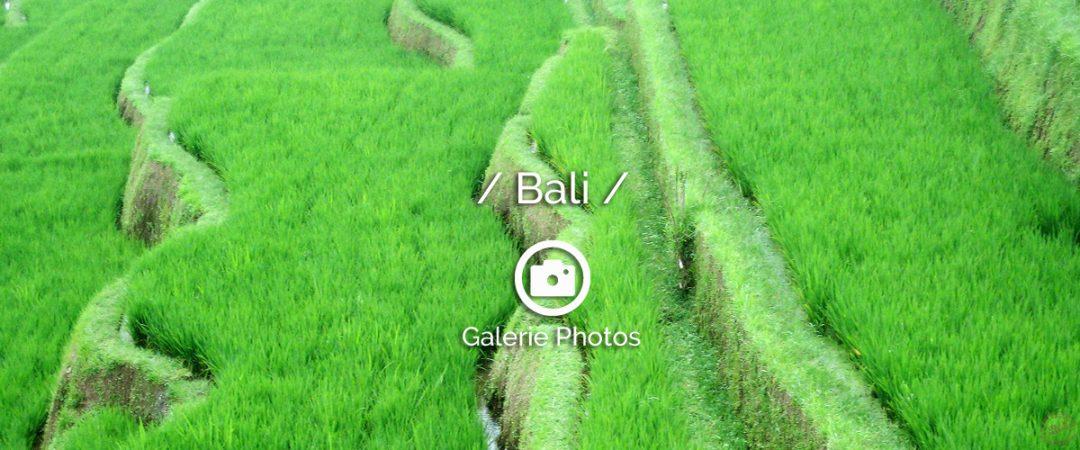 Photos-bali