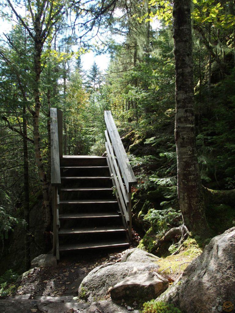 Sentier de l'Erablière