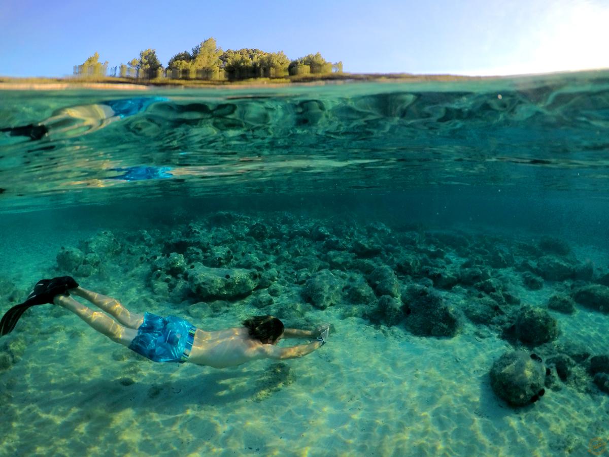 BD-sous-la-mer