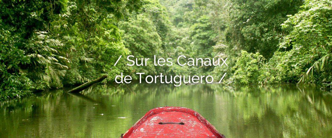 entete-tortugero-costarica