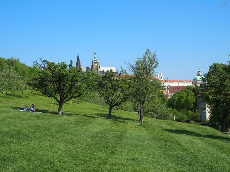 Jardin de Petrin