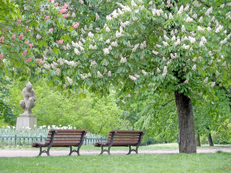 Jardin de Letna