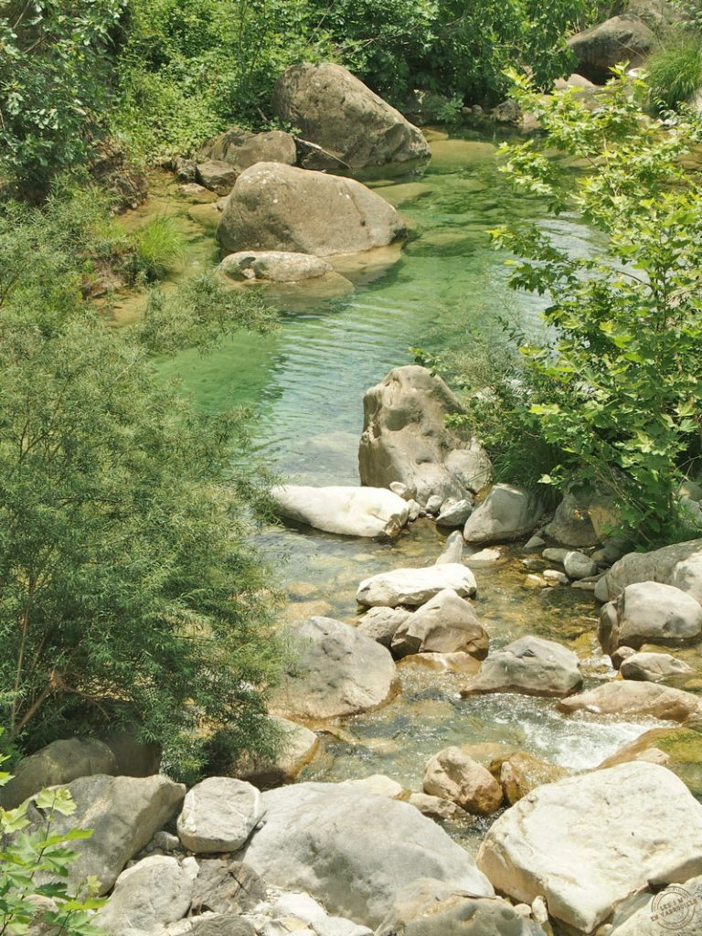 Torrent Barbaira