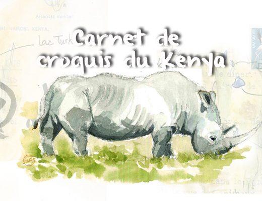entete-croquis-kenya3