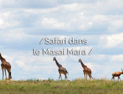 entete-masai-mara