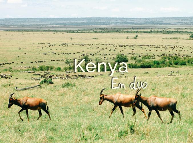 // KENYA 2013 // Une semaine en safari à travers la savane africaine, à la rencontre de ses animaux emblématiques.