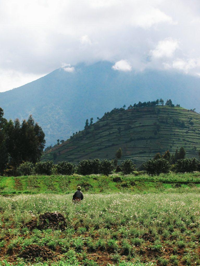 rwanda_blog_voyage