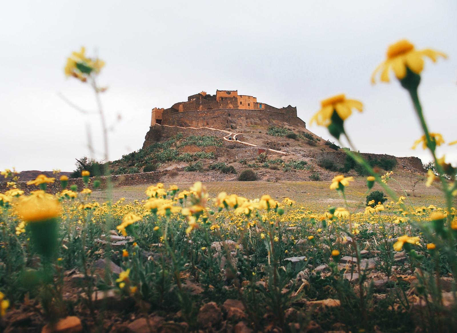 maroc-kasbah-tizourgane