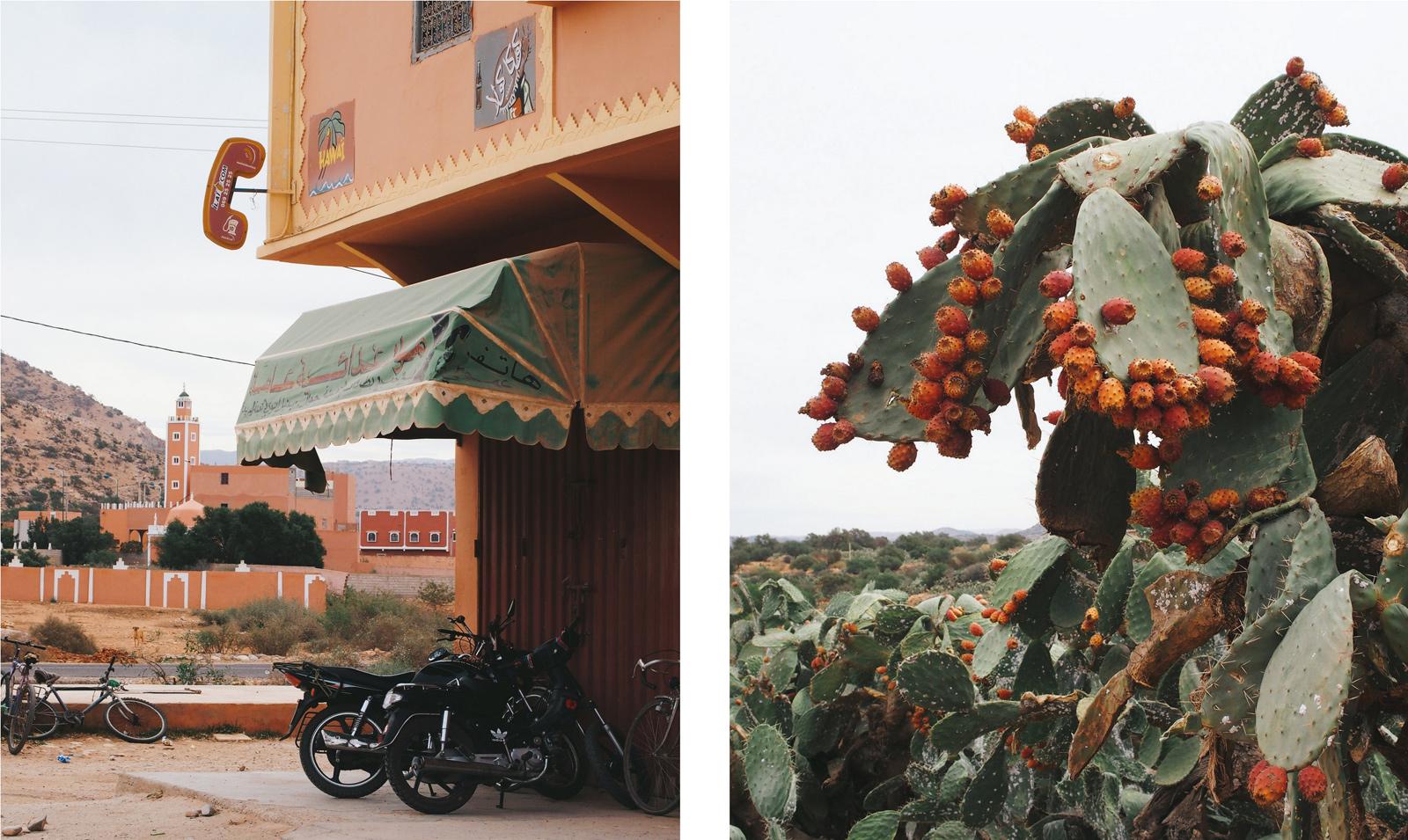 maroc-ait-baha-tafraout