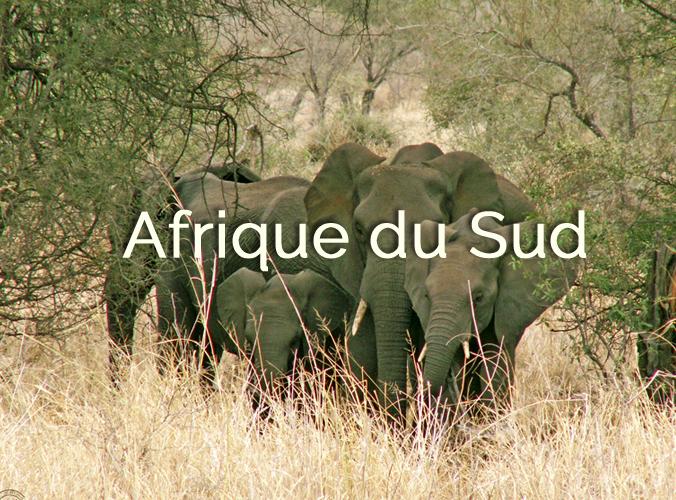 afriquedusud-destination
