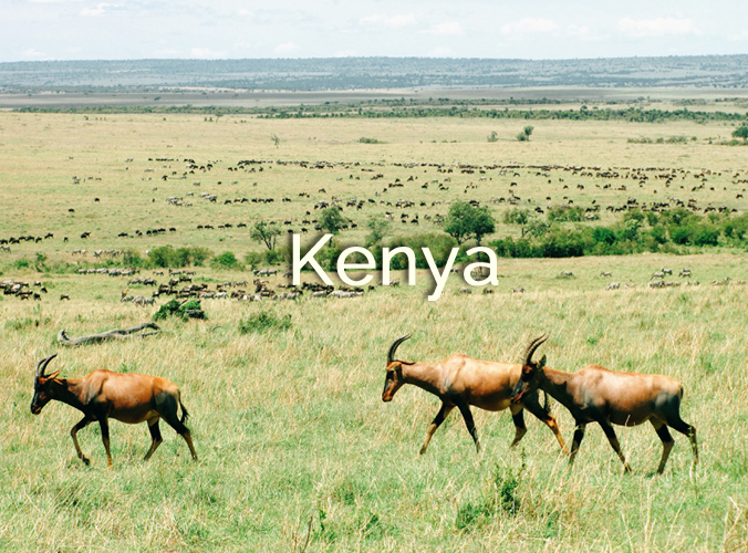 kenya-destination2